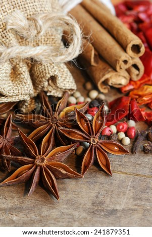 Spices with anise seeds, cinnamon, clove, pepper in macro shot - stock photo