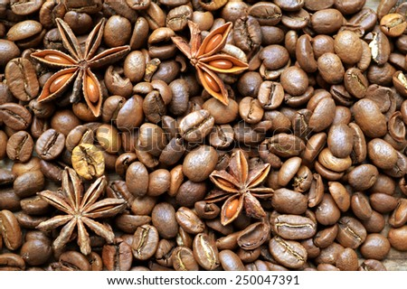 Spicy anise stars on lots of roasted coffee beans - stock photo