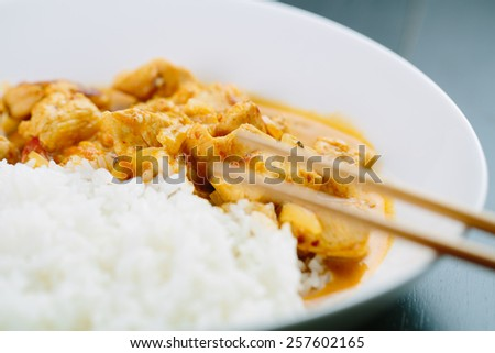 Spicy chicken curry with rice  - stock photo