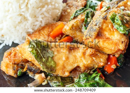 Spicy fried fish with basil leaves with rice