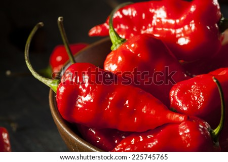 Spicy Hot Bhut Jolokia Ghost Peppers on a Background - stock photo