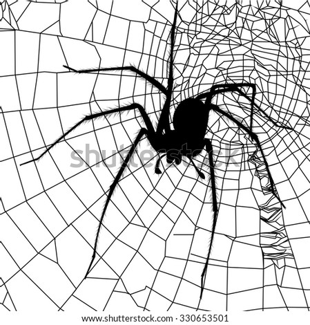 spider and spider web - stock photo