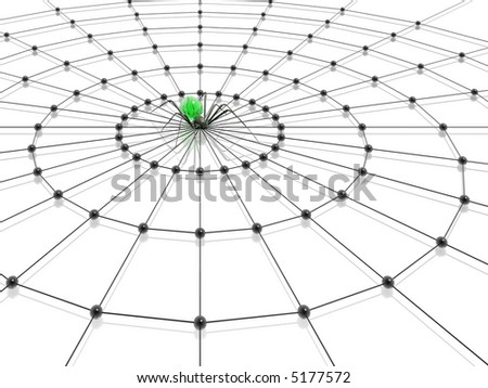 spider and web  (green-black illustrations set, high resolution 3d images) - stock photo