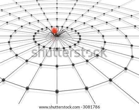 spider and web (high resolution 3D render) - stock photo