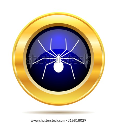 Spider icon. Internet button on white background.