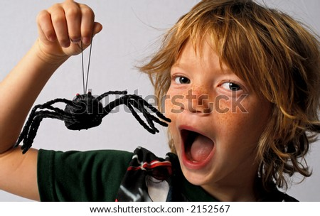 Spider Kid - stock photo