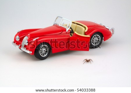 Spider stepping down from car toy - stock photo