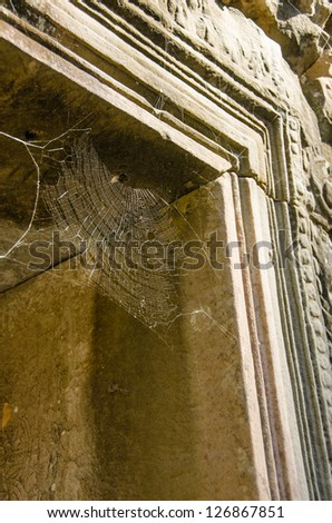 Spider web in Banteay Kdei Temple, Angkor, Cambodia