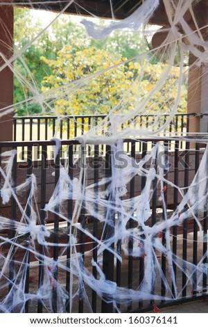 Spider webs - stock photo
