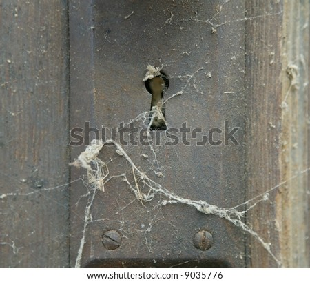 spiderweb on antique key hole in an old wood door (shallow depth of field) - stock photo