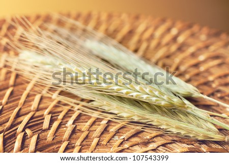 Spikelet Wheat