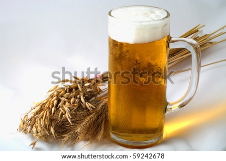 Spikelets barley, wheat and oat with glass of beer