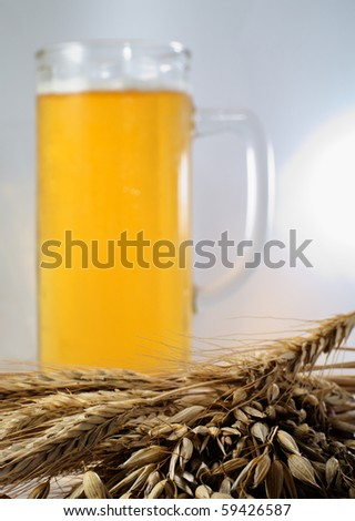 Spikelets barley, wheat and oat with glass of beer - stock photo