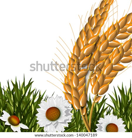 Spikes and flowers. Illustration. - stock photo