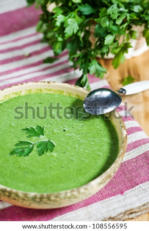 Spinach cream soup - stock photo