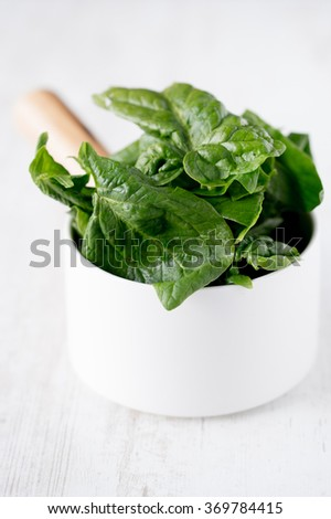 Spinach in a white pot white background