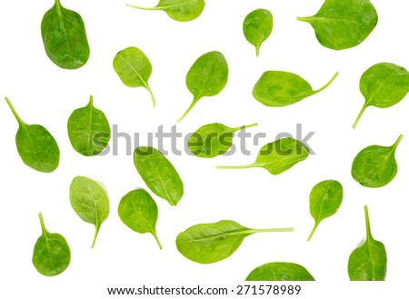 spinach isolated - stock photo