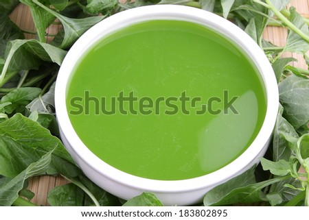 Spinach soup, vegetarian food, with fresh spinach leaves. - stock photo