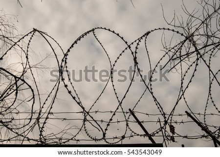 Barbed Wire On Dark Fence Monochrome Stock Photo 132211376 ...