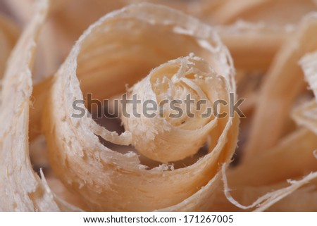 spiral wood chips close up. macro - stock photo