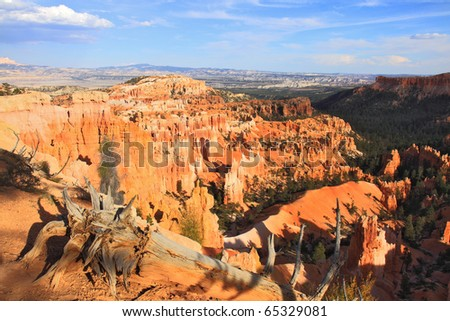Spires of orange, red and coral sandstone populate Bryce Canyon National Park