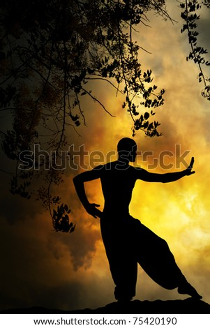 Spiritual Martial Arts Background - stock photo