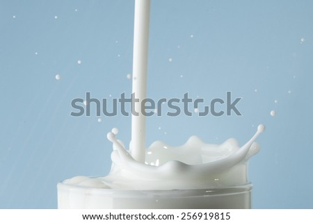 Splash of milk in glass on blue background - stock photo