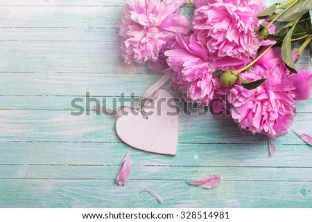 Splendid  pink  peonies flowers and white  decorative heart in ray of light  on turquoise painted wooden planks. Selective focus is on flowers. Place for text. - stock photo