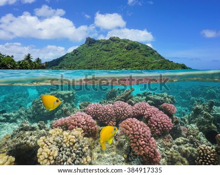 Split image above and below water surface, landscape of Huahine island with coral and tropical fish underwater, Pacific ocean, French Polynesia - stock photo