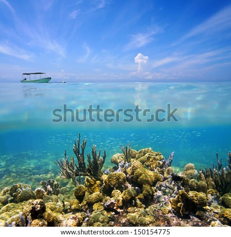 Split view above and under the sea with a coral reef on the ocean floor and blue sky with a boat - stock photo