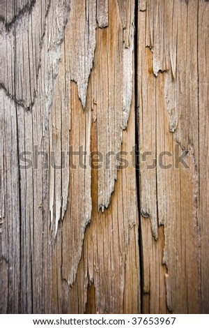 splitted wethered wood background