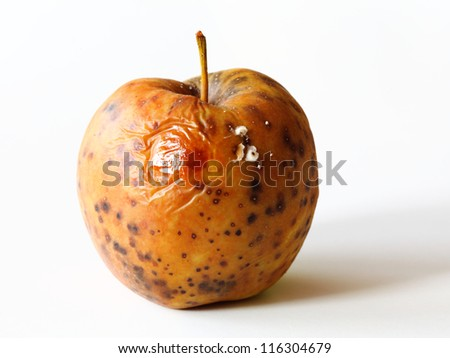 spoiled one bad red apple on white background - stock photo