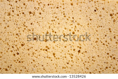 Sponge background - stock photo
