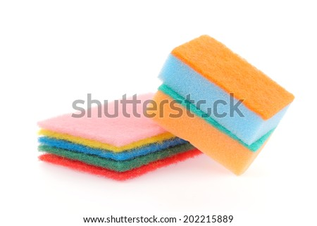 sponge isolated on a white background