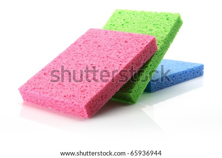 Sponges on White Background