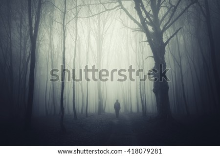 spooky forest background - stock photo