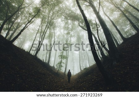 spooky forest scene with man silhouette on dark path - stock photo