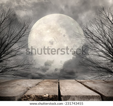Spooky forest with full moon. Elements of this image furnished by NASA - stock photo