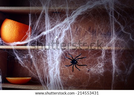 Spooky Halloween spider web background covering wooden shelves with a fresh pumpkin and large spider crawling across it - stock photo