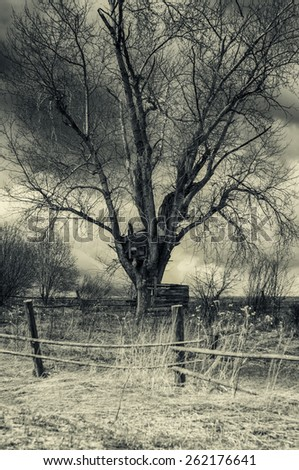 Spooky house on a high branch tree in dark tones - stock photo