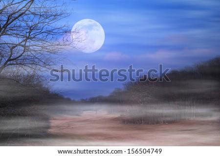 Spooky night - stock photo