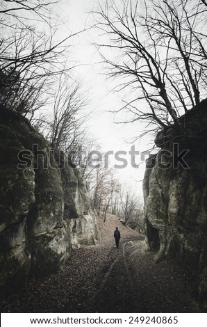 spooky scene with man on dark path between cliffs and twisted tree silhouettes - stock photo