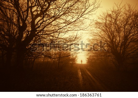 spooky scene with man on road through a dark forest - stock photo