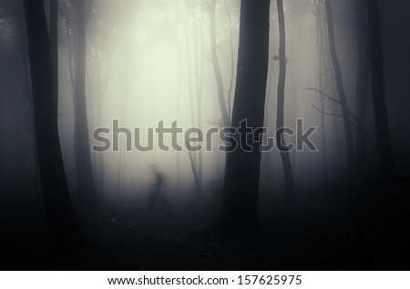spooky shadow crawling through trees in a dark misty forest - stock photo