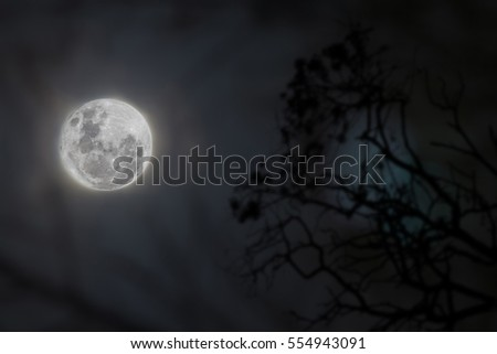 spooky view of a bright super moon showing clear details of the lunar landscape with branches in soft silhouette