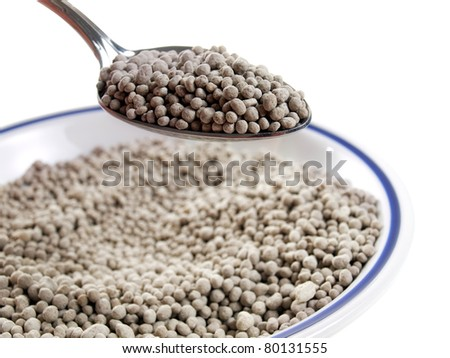 Spoon and a plate full of fertilizer on a white background. - stock photo