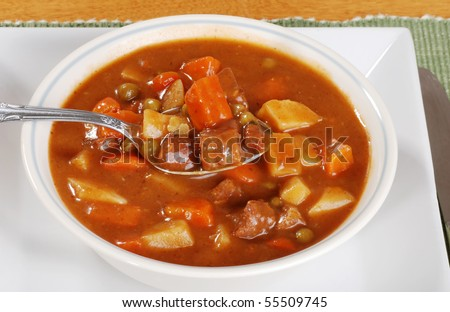 spoonful of beef stew - stock photo
