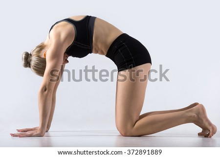 Sporty beautiful young woman practicing yoga, working out, doing Cat Pose, Marjaryasana, exercise for flexible spine and shoulders, asana paired with Cow Pose on the inhale, studio - stock photo