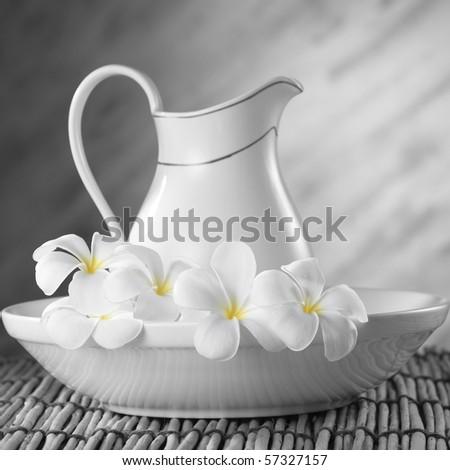 spot color on the frangipani flower - stock photo