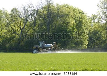 Spraying pesticide on a winter wheat field - stock photo